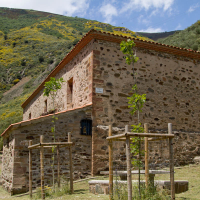 Romería de Villarrica 2018. 7 Julio