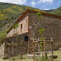 Romería Virgen de Villarrica
