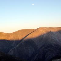Reportaje. Altos Valles del Urbión y el Portilla. Encuentro con el Lobo